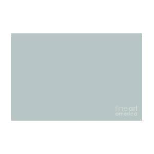 Airy Light Pastel Solid Color Pairs To Sherwin Williams Niebla Azul Sw 9137 Digital Art By Pipa Fine Art Simply Solid