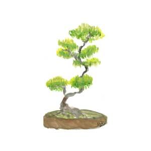 Bonsai Tree Painting By Atlanta Carrera
