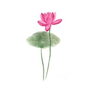 Pink Lotus Painting 7 Painting By Green Palace