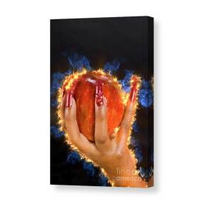 hand holding apple in Honey 6 Canvas Print / Canvas Art by