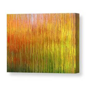 MAJESTIC FOREST AUTUMN TREE MODERN CANVAS PRINT READY TO HANG