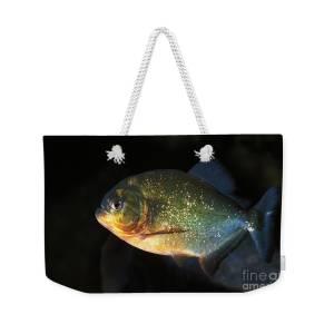 Piranhas Weekender Bag