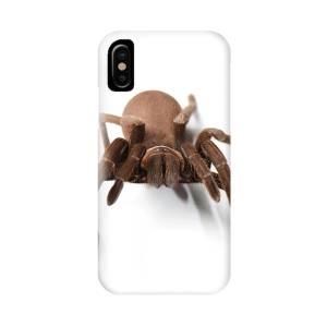 Tarantula (poecilotheria Regalis) On Man's Hand IPhone X Case for