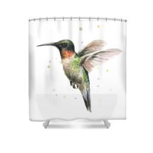 Hummingbird Shower Curtain For Sale By Olga Shvartsur