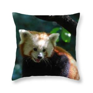 Really Cute Giant Panda Bear With Bamboo Throw Pillow For Sale By Dejavu Designs