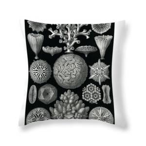 Leptomedusae Throw Pillow For Sale By Ernst Haeckel