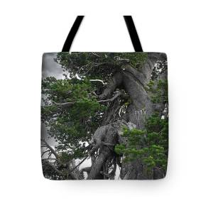 Twisted And Gnarled Bristlecone Pine Tree Trunk Above Crater Lake Oregon Tote Bag For Sale By Christine Till