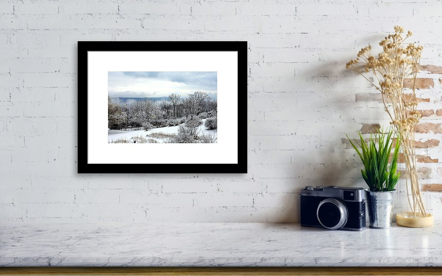 Snow In Winter Ithaca New York Framed Print by Paul Ge