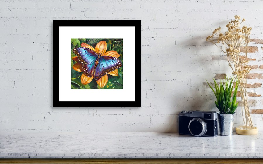 Blue Morpho Butterfly Framed Print by Nancy Tilles