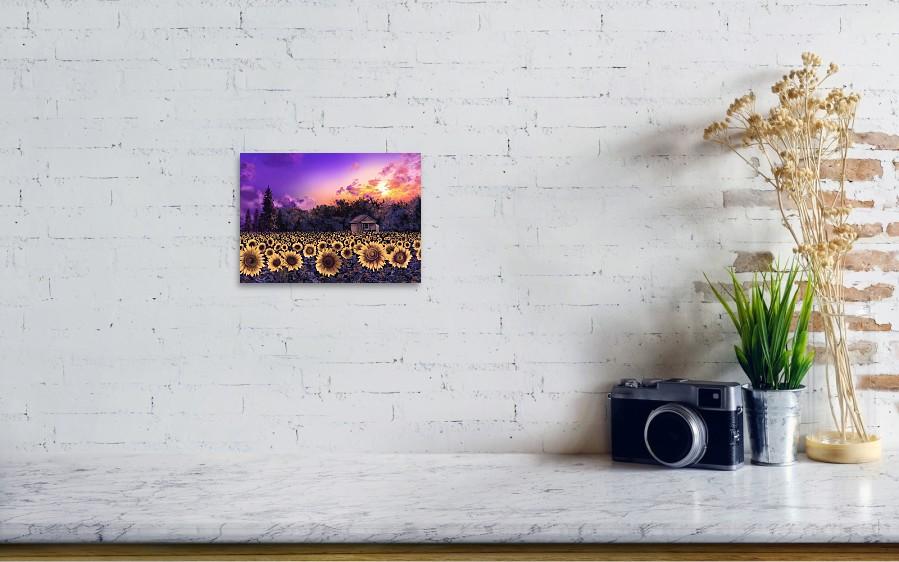 Sunflower Field Purple Art Print by Bekim Art on