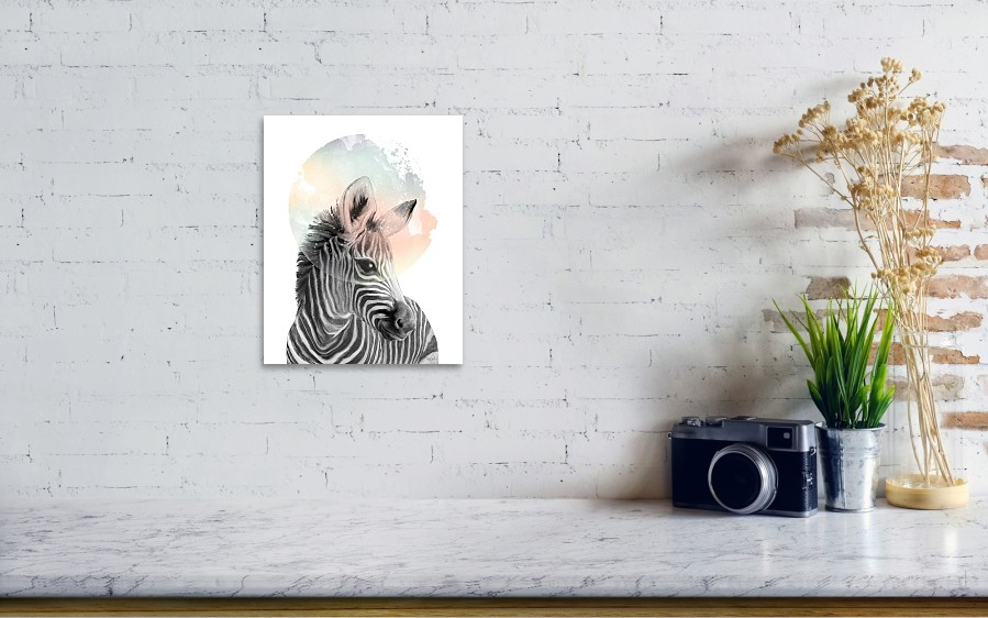Zebra dreaming poster by amy hamilton wall view 001 reheart Gallery