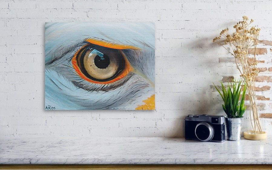 Eagle Eye By Alex Rios Wall View 001