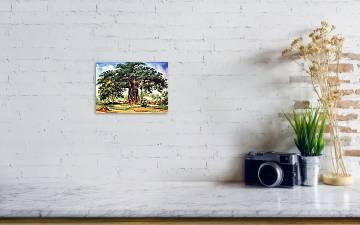 Baobab Tree - South Africa Art Print